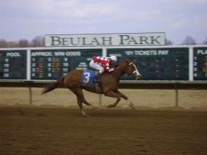 Dye and Deny heads toward the wire at Beulah Park under jockey Edgar Paucar.