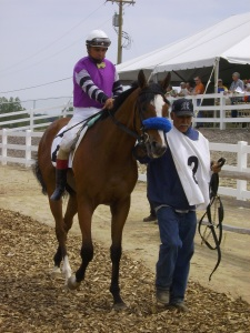 Will Meadow Wise be Michigan's THoroughbred of the Year in 2009? He's as live as any.